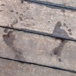 Photograph of fading wet footprints on wooden decking, accompanying the FROM HUMBLE ORIGINS' webpage about our specialised offerings around People. These offerings will enrich your knowledge of your historical family members and create a unique record of your family lives.